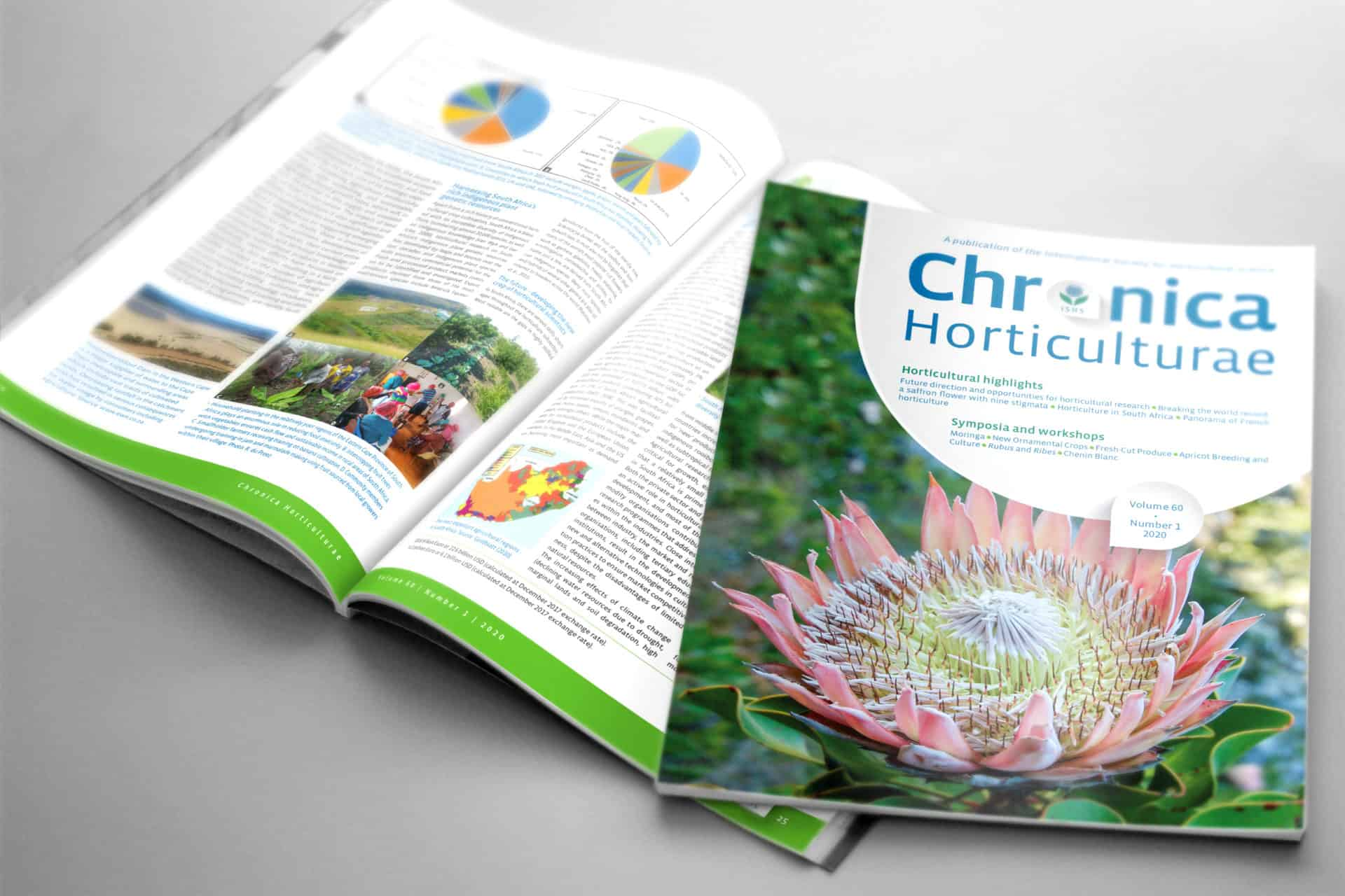 MagazineMockup_Chronica